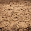 Severe California drought, Western heat wave: Here's how bad it really is, how to monitor